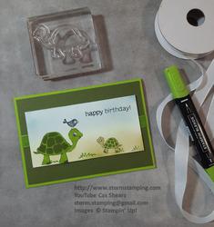 Turtle friends birthday