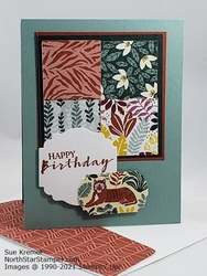 Stampin up in the wild 3x3 north star stamper