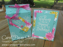 Stampin up color   contour happiest birthday carolpaynestamps8