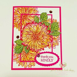 Delicate dahlias in bumblebee   magenta card