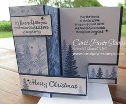 Stampin up beauty of friendship carolpaynestamps3