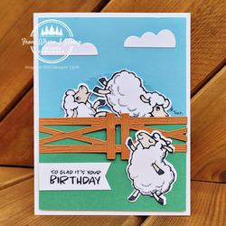 Sheep wheelie