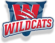 Brisbane South Wildcats Netball