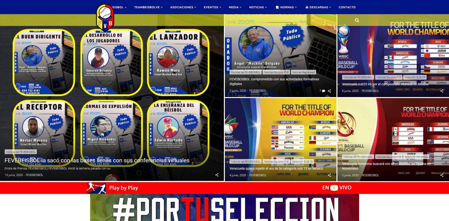 Federación Venezolana De Béisbol
