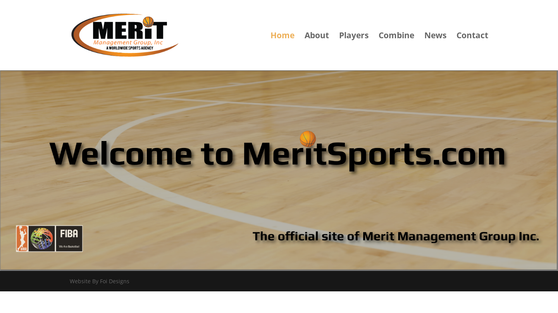 Merit Sports Management Group Inc