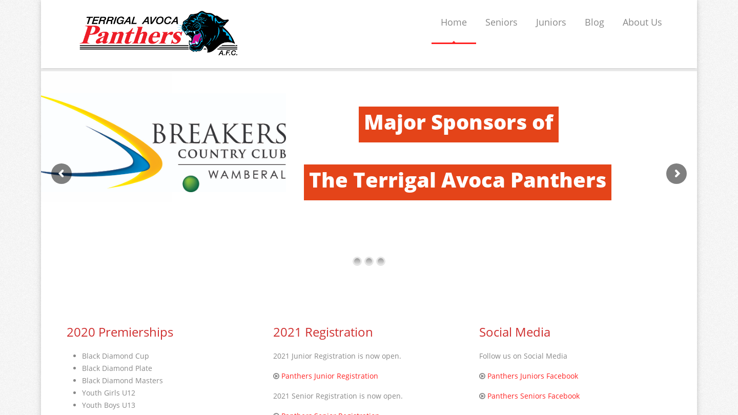 Terrigal-Avoca Panthers AFC
