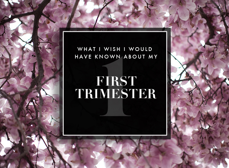 First Trimester Symptoms, First Trimester, Pregnancy, First Baby, What I Wish I would have known about my first trimester