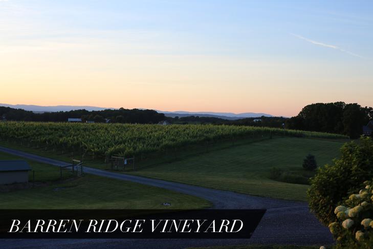 Barren Ridge Vineyard, Wedding, Sunset, Virginia, Shenandoah Valley