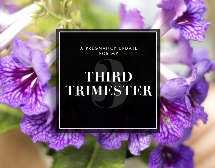 Third Trimester Recap, Third Trimester Symptoms, Pregnancy