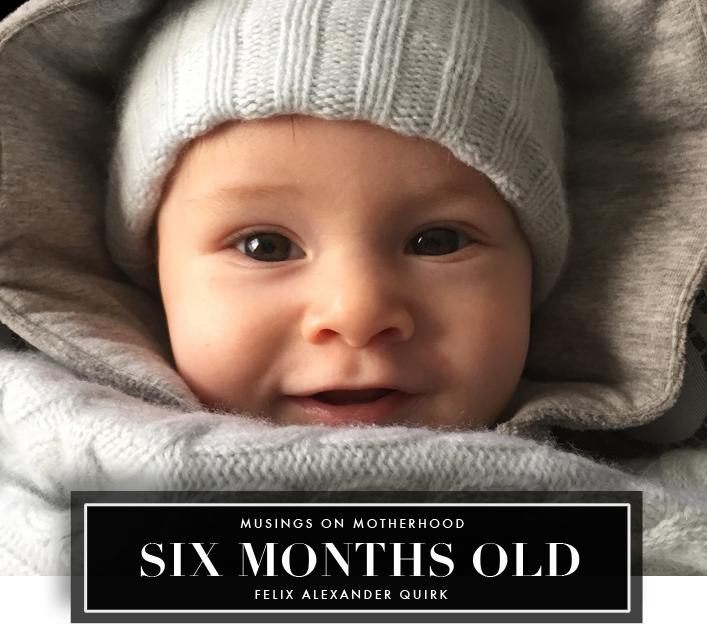 felix six months