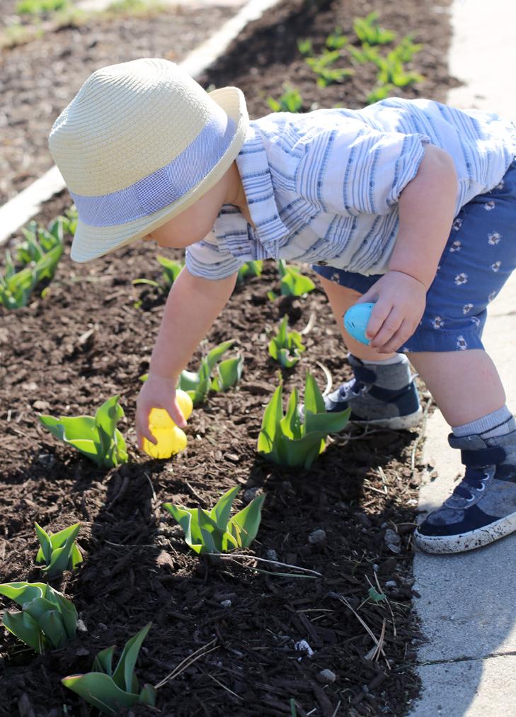 Cute Toddler Boys' Outfit, Easter Egg Hunt, Felix