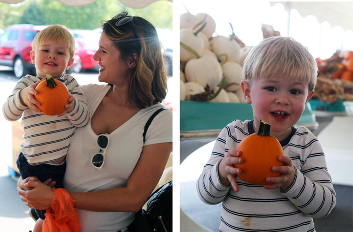 Apple Picking, Pumpkin Patch, Toddler Pumpkin Patch, Toddler Apple Picking, Fall Time Family Activities