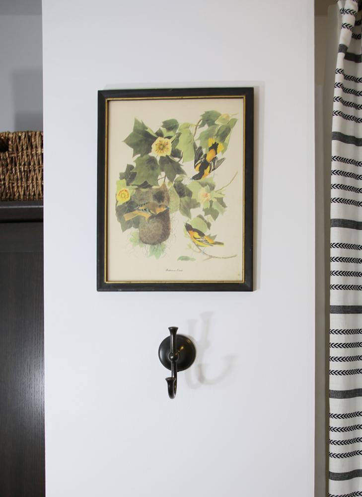 Bathroom After, Target Shower Curtain, Thrifted Print, Windowless Bathroom, Farmhouse Bathroom Idea