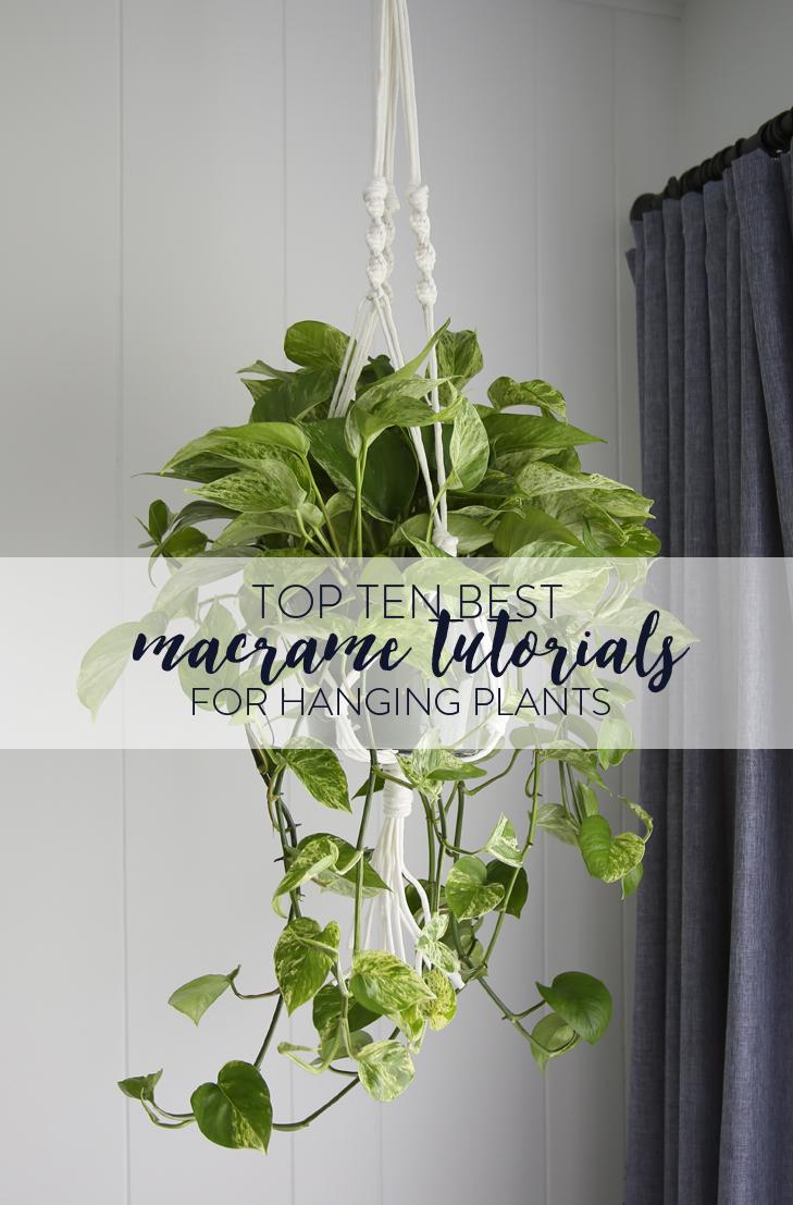 Top Macrame Plant Hanger DIYs, Macrame Plant Holders, Best Macrame DIYs
