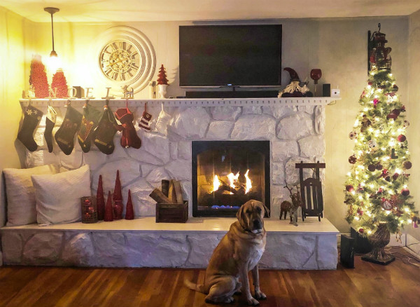 Noel Christmas Mantel & Dog