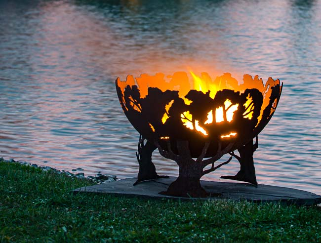 Forest Fire Pit at Night
