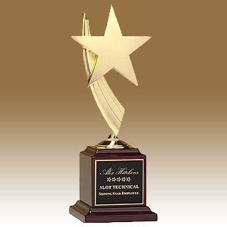 13 in Star Award