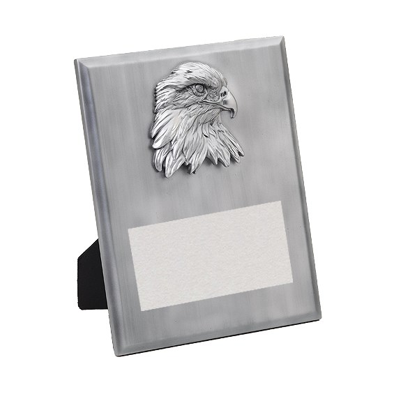 8 in x 10 in Silver Eagle Resin Plaque