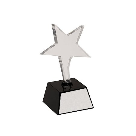 7.5 in Crystal Shooting Star Award