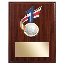 Hole In One Golf Plaque - 2 Sizes