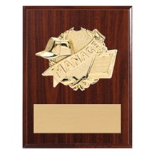 3D Gold Mount Manager Plaque