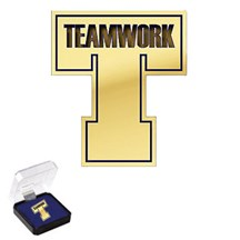 Teamwork Pin