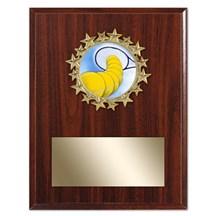 Star Frame Tennis Plaque
