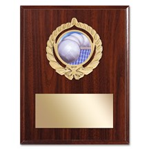 Gold Braid Volleyball Plaque