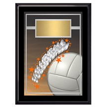 Exclusive Volleyball Plaque - 4 Sizes
