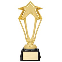 3-D Rising Star Trophy