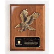 9x12 Noble Eagle