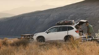 2019 Subaru Forester Commercial: All You Love