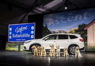 Subaru Ascent Makes World Debut at Los Angeles Auto Show