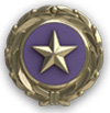 The National Gold Star Family Registry