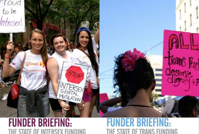 Two New Reports on the States of Intersex and Trans Funding
