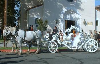 3875 horse carriage rental photo p3
