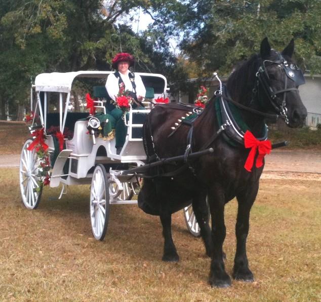 christmas holiday horse carriage rental baton rouge clinton la louisiana 33659