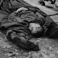 Corpses lie in Buchewald.jpeg