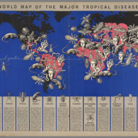 World Map of the Major Tropical Diseases