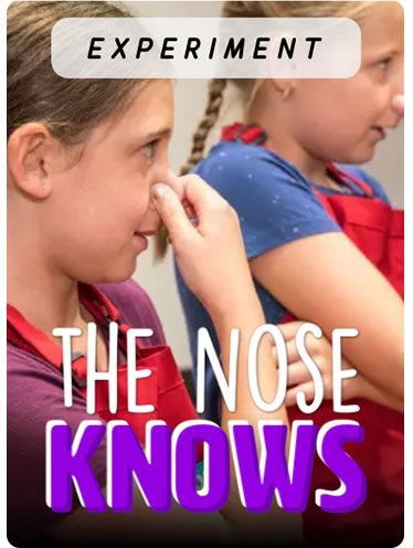 EXPERIMENT: The Nose Knows