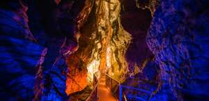 Ruakuri Cave - Waitomo
