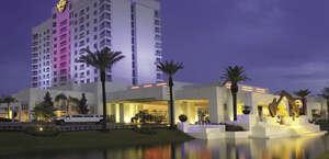 Seminole Hard Rock Hotel & Casino - Tampa Pool Bar