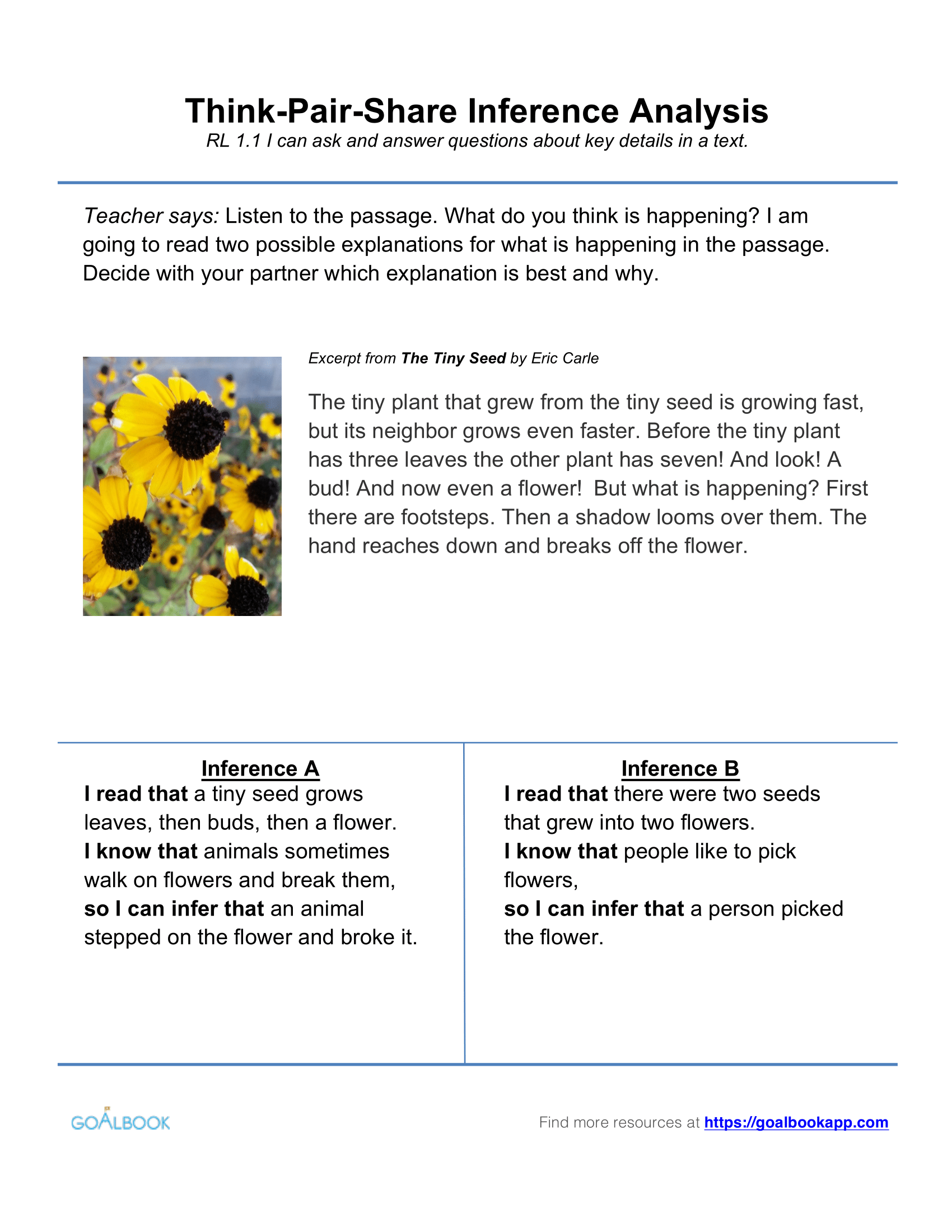 W11 Opinion Writing Writing 1st Grade – The Tiny Seed Worksheets