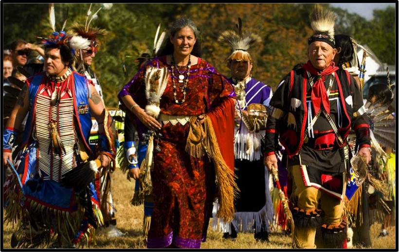 native americans in the united states and african americans essay