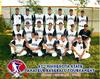 Thumb 2010 state tournament
