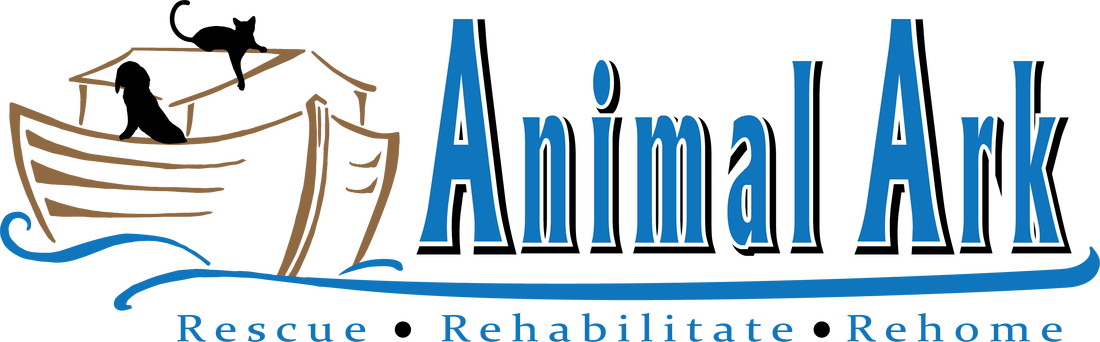 Animal ark color 3