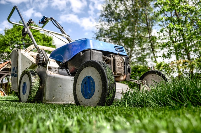 a regular lawn mowing is essential for our gardens