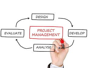 management services are essential for a successful company development
