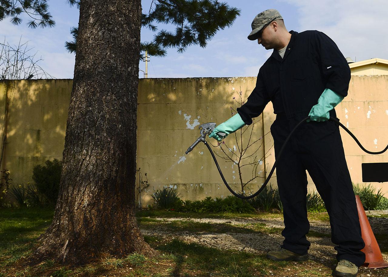 exterminator working for a pest control company