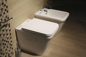toilet and bidet in a bathroom